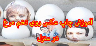 lemoo.ir_photo_on_egg