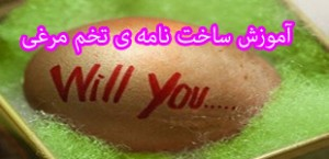 egg_message_in_egg