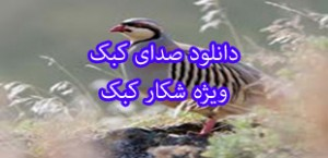 image-kabk-lemoo