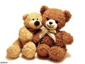 عکس-خرس-عروسکی-9