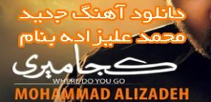 Mohammad-Alizadeh-Koja-Miri-lemoo.ir