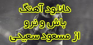 lemoo.ir-Masoud-Saeedi-Basho-Naro-