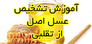 LEMOO.IR_honey_purity_test